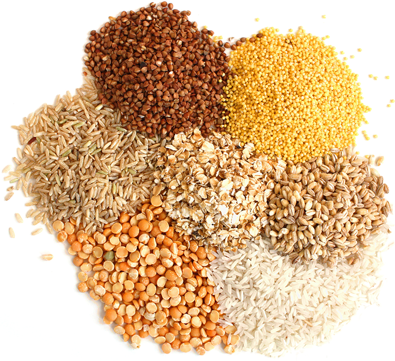 Gluten-Free-Grains-For-Home-Brewing